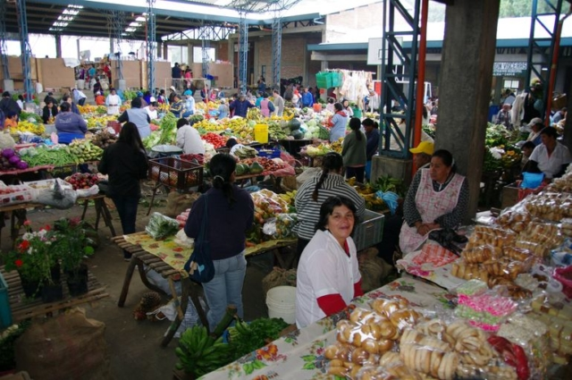 Silvia Markt