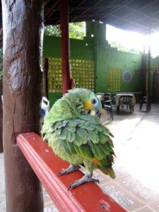 Kolumbien Reise: Kolumbien classico